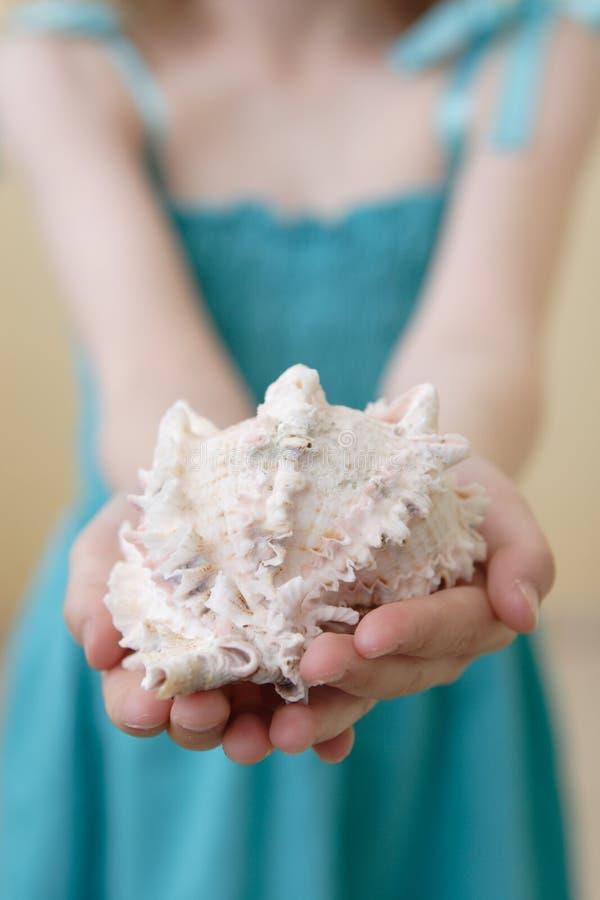 Het dragen van overzeese shell royalty-vrije stock foto