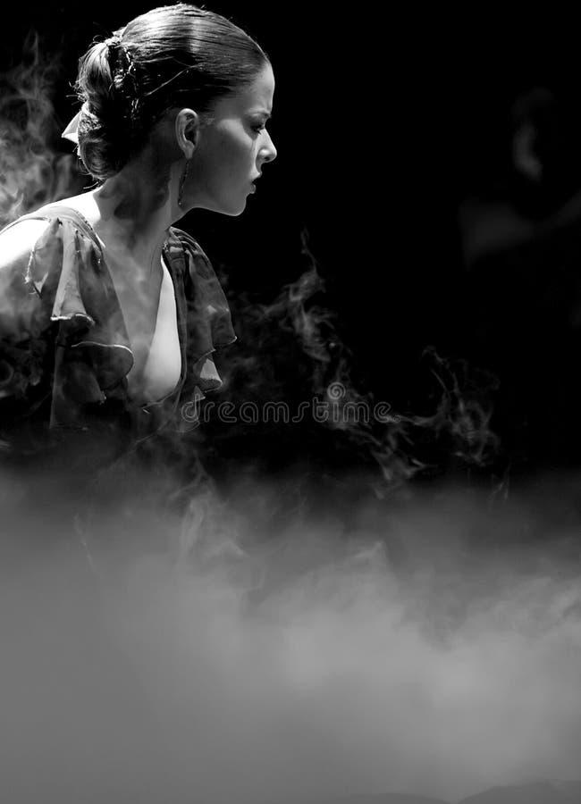 Het Drama van de Dans van het flamenco: Trambestuurders stock foto's