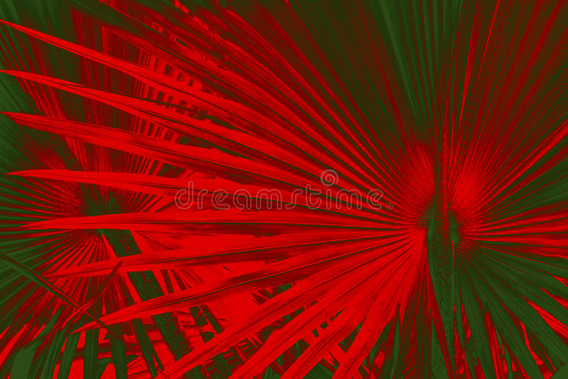 Het dramatische patroon in palmettobladeren met Kerstmis kleurt rood royalty-vrije stock afbeeldingen