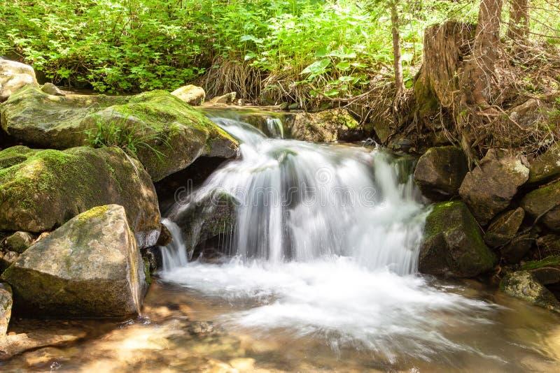 Het draperende vlotte water van de watervalclose-up zeer met natte rotsen stock foto's