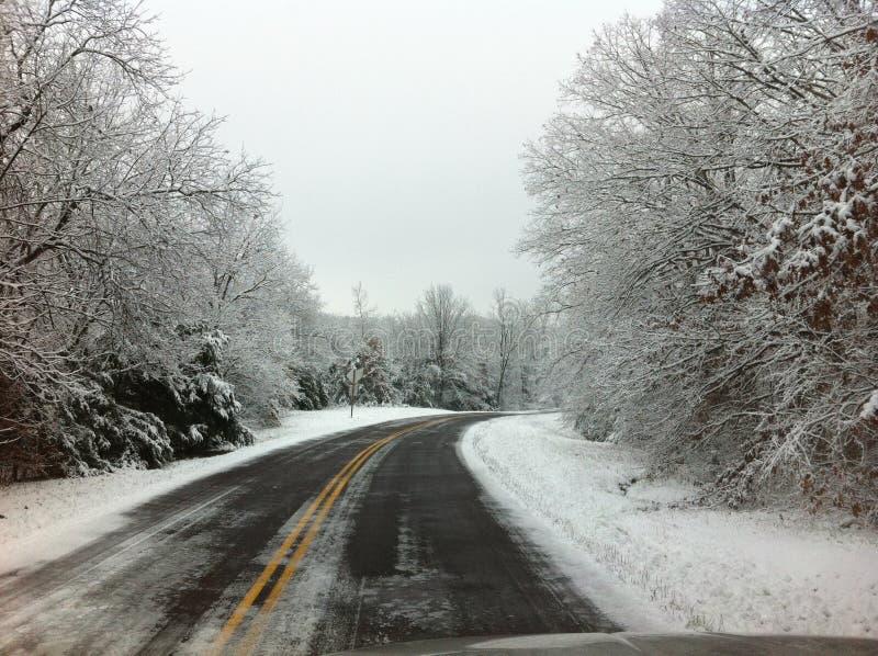 Het drijven door sneeuw behandelde bomen royalty-vrije stock foto