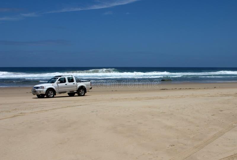 Het drijven op strand stock foto's