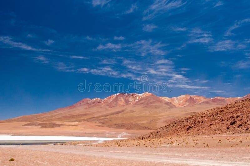 Het drijven van Altiplano van Bolivië stock foto's