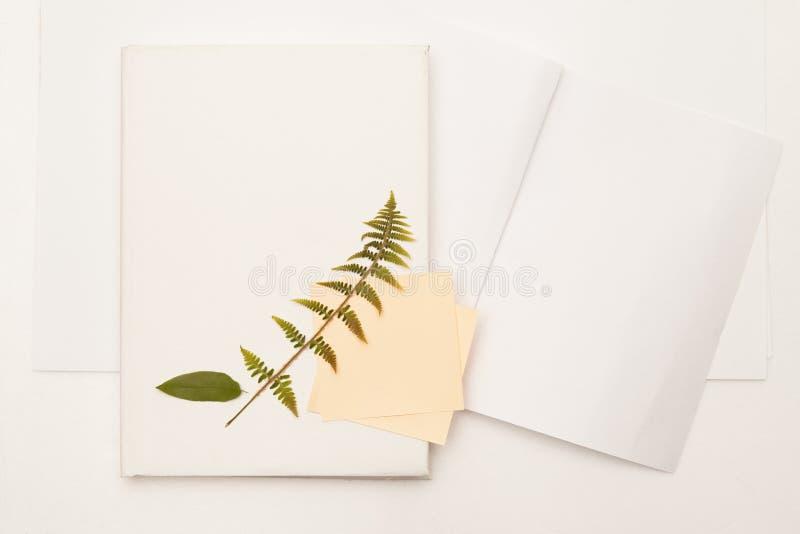 Het droge blad van wilde kers en varen op het boek stock foto