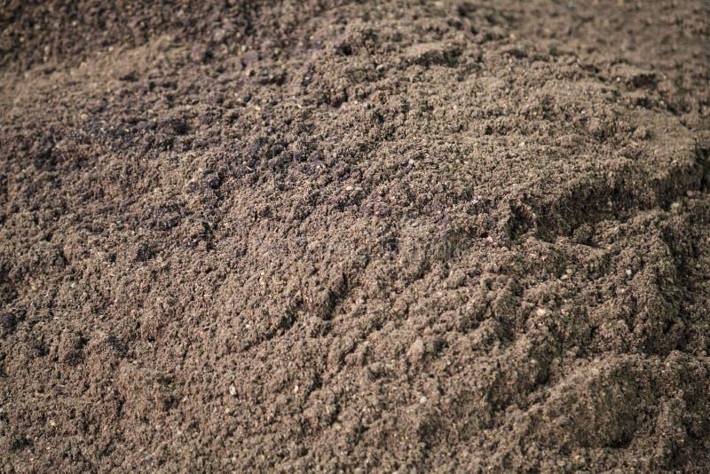 Het droge donkere bruine organische compost, mest, stelde meststof, grondveredelingsmiddel, humus, natuurlijke installatievoeding stock foto
