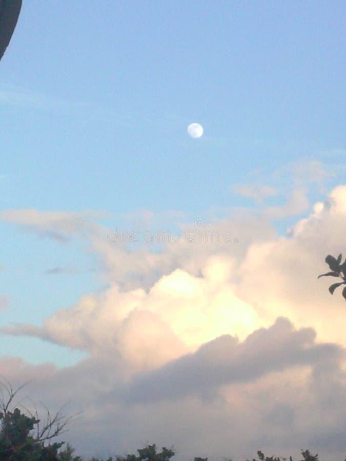 Het dromen in de wolken één ochtend royalty-vrije stock fotografie