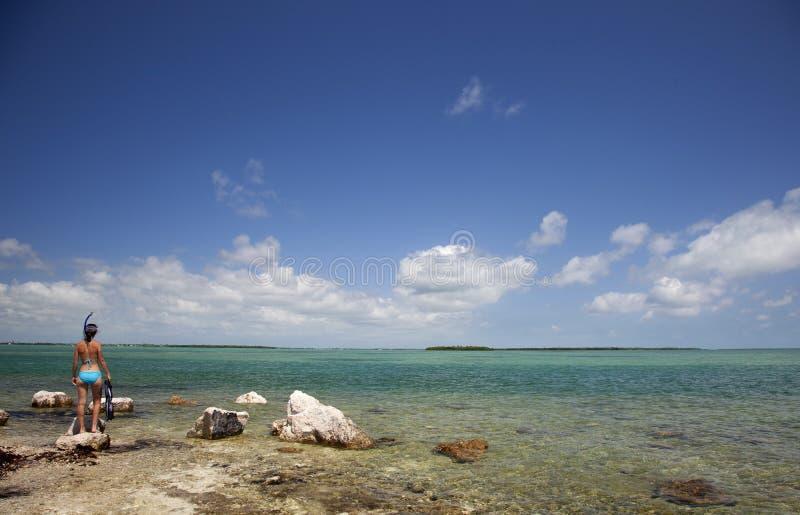 Het duidelijke Blauwe Snorkelen van het Water royalty-vrije stock foto's