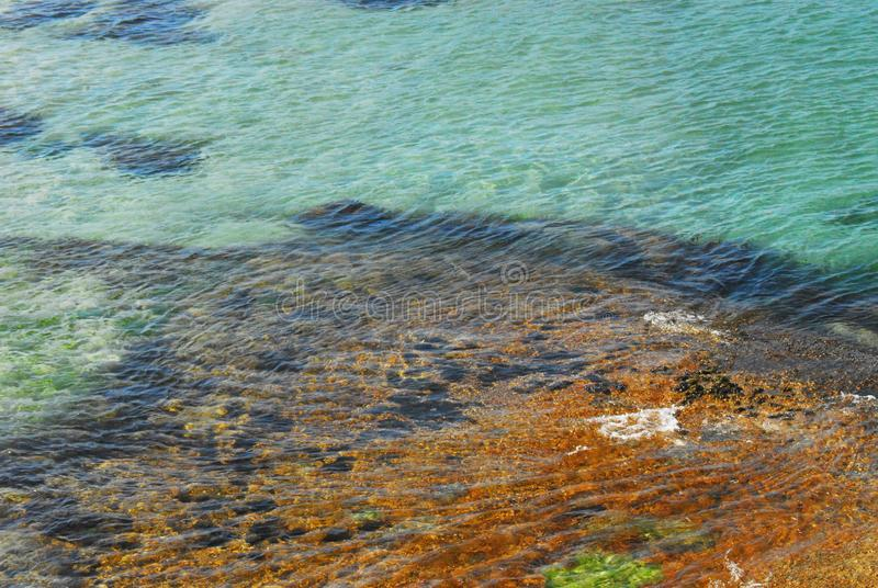 Het Duidelijke Water van Afrika en Kleurrijke Zeebodem dichtbij Cape Town royalty-vrije stock afbeelding