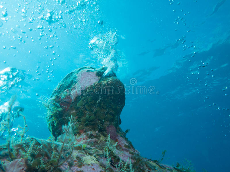 Het duiken bij het onderwatermuseum cancun stock fotografie