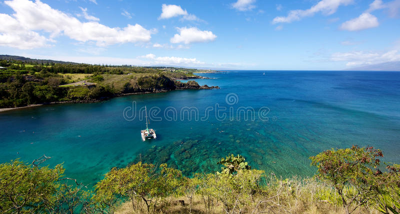 Het duiken bij Honolua-Baai stock afbeelding