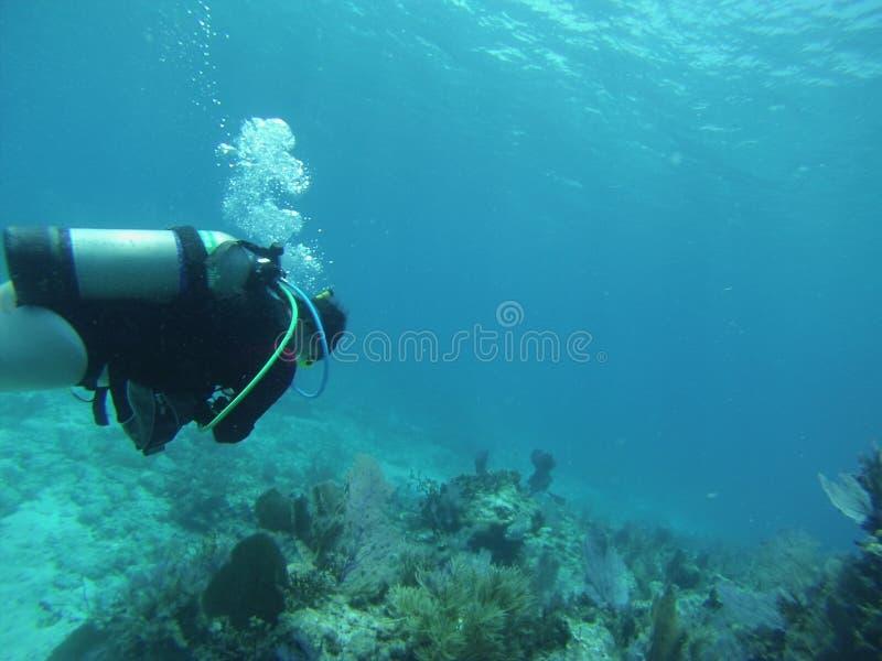 Het duiken Zeer belangrijke Largo royalty-vrije stock foto