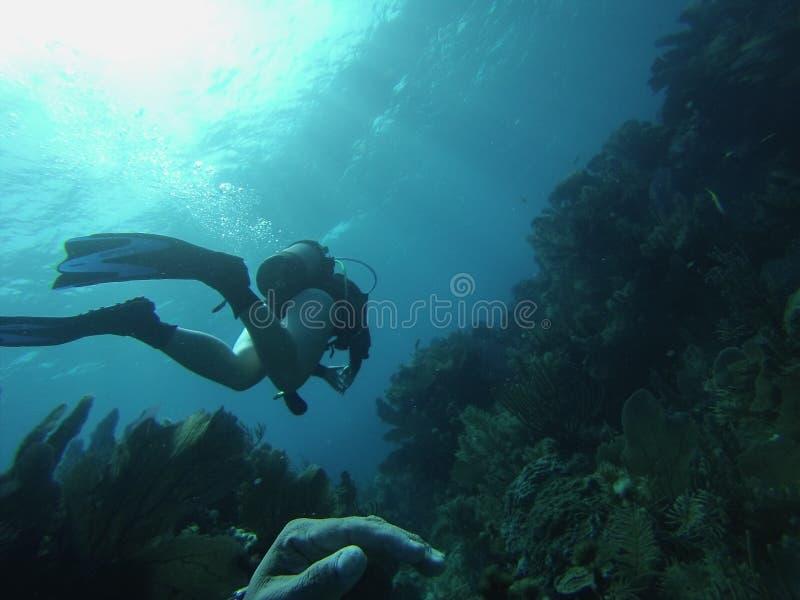 Het duiken Zeer belangrijke Largo stock foto's