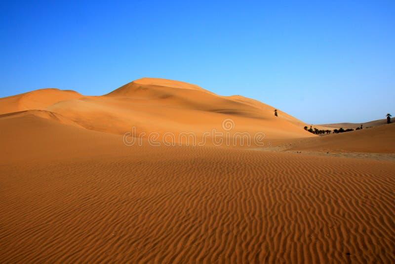 Het Duin van het zand stock afbeelding