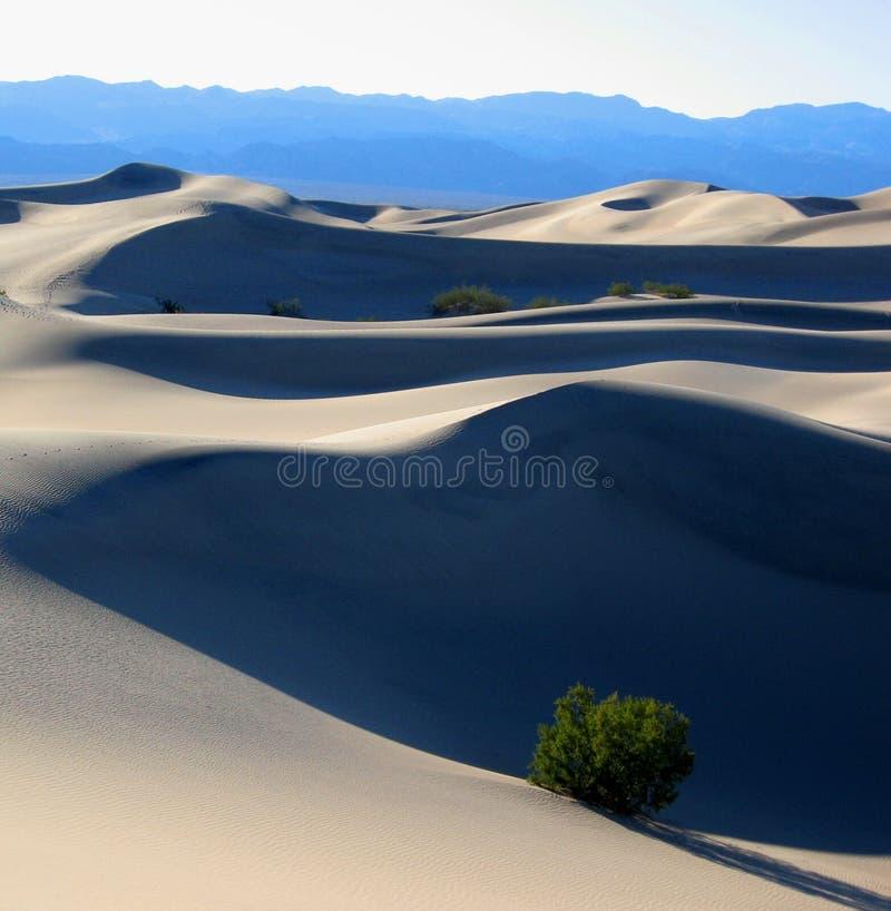 Het Duin van het zand in de Vallei NP, CA van de Dood stock foto
