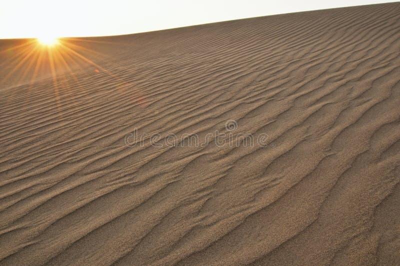 Het duin van het zand met gloed stock foto's