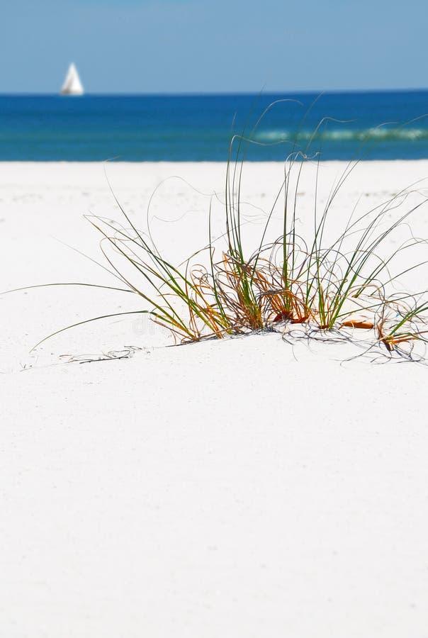 Het Duin van het zand, Strand en de Boot van het Zeil royalty-vrije stock fotografie