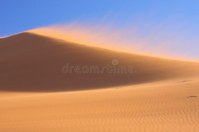 Het Duin van het zand in Wind royalty-vrije stock afbeeldingen