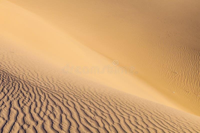 Het duin van het zand in zonsopgang in de woestijn stock foto