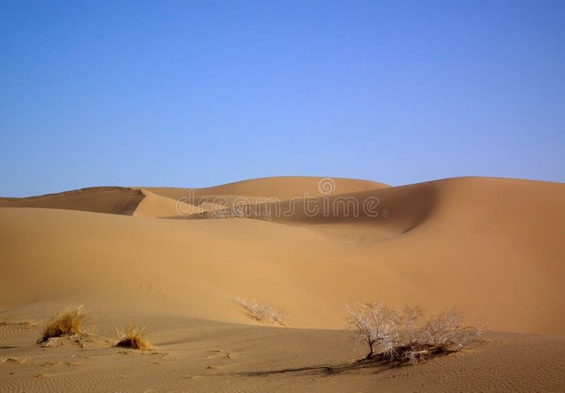 Het duin van het woestijnzand royalty-vrije stock afbeeldingen