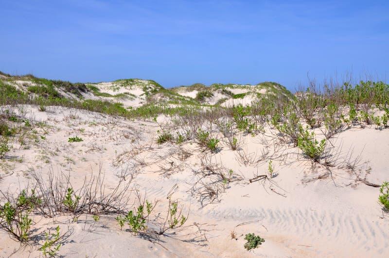 Het Duin van het zand in Kaap Hatteras, Noord-Carolina stock afbeeldingen