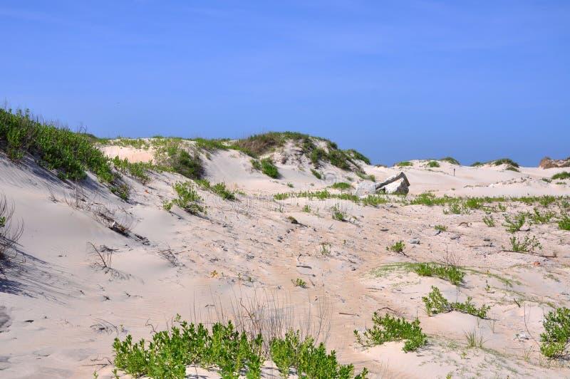 Het Duin van het zand in Kaap Hatteras, Noord-Carolina stock foto's