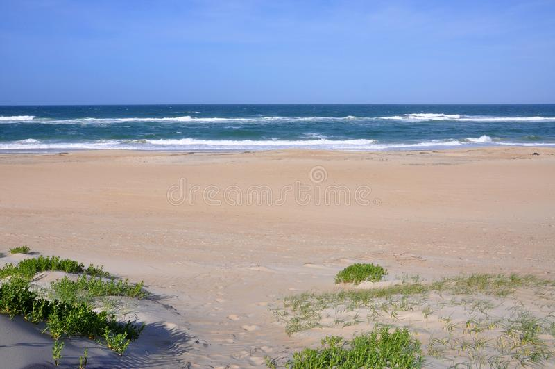 Het Duin van het zand in Kaap Hatteras, Noord-Carolina royalty-vrije stock afbeelding