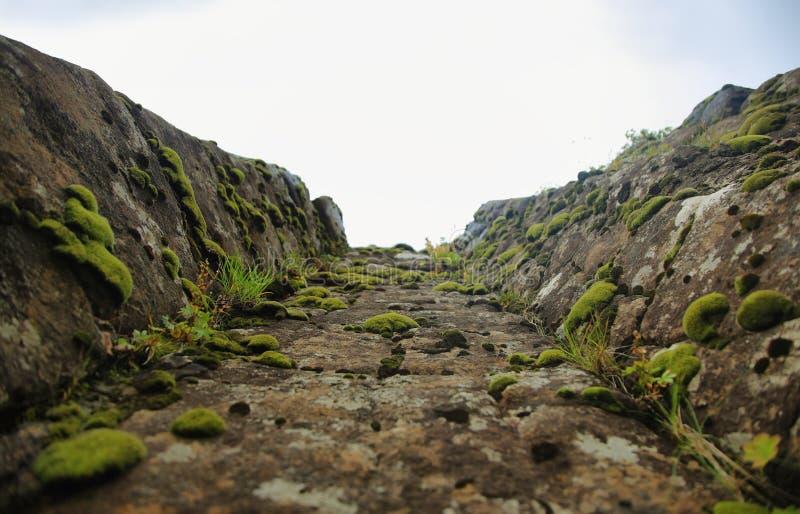 Het Dverghamraroverzees erodeerde basaltachtige kolom royalty-vrije stock afbeeldingen
