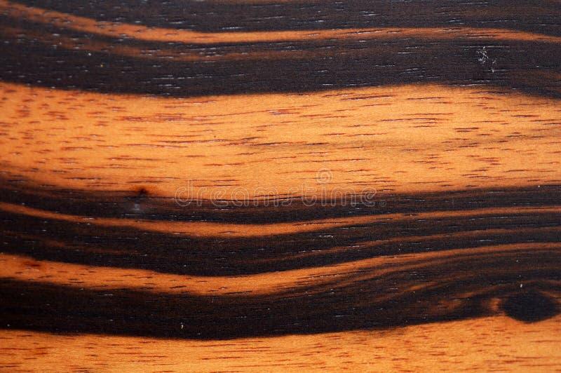 Het Ebbehouten hout van Makassar royalty-vrije stock foto's
