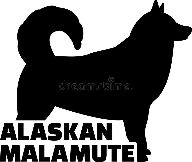 Download Het Echte Woord Van Alaska Van Het Malamutesilhouet Vector Illustratie - Illustratie bestaande uit malamute, dier: 114226644