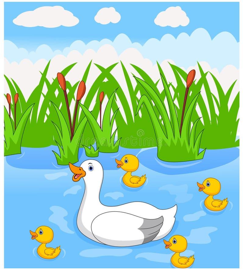 Het eendbeeldverhaal zwemt met haar vier kleine leuke eendjes in de rivier royalty-vrije illustratie