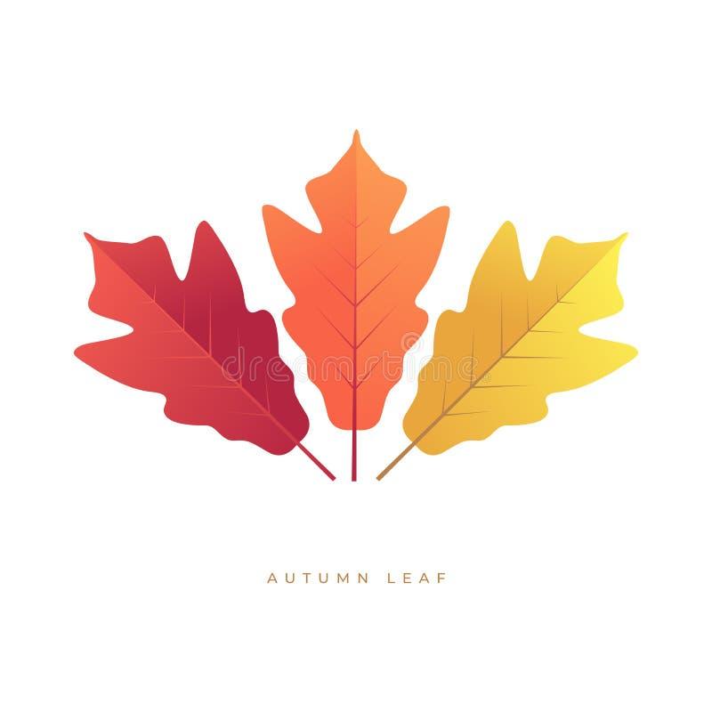Het eenvoudige kleurrijke symbool van de herfstbladeren vector illustratie