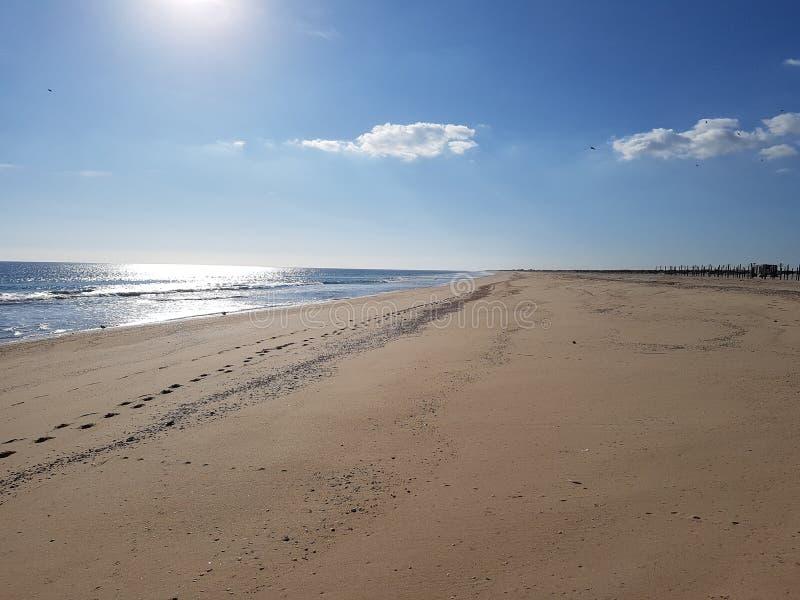 Het eenzame strand royalty-vrije stock foto's