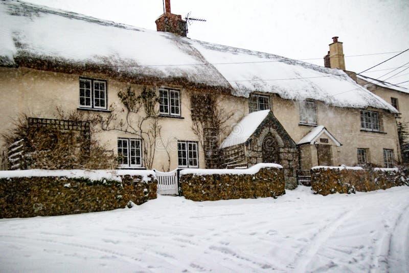 Het Effect van het Dier van het Onweer van de de Wintersneeuw van het Oosten in Drews stock afbeelding