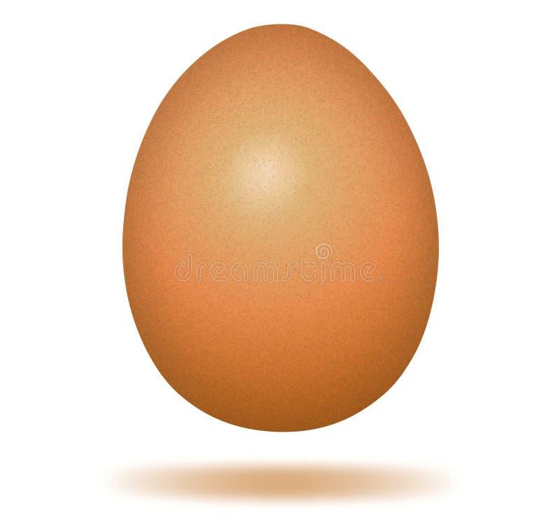 Het ei van de kip. vector illustratie