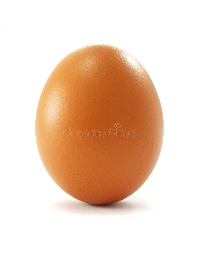 Het ei van de kip royalty-vrije stock afbeeldingen
