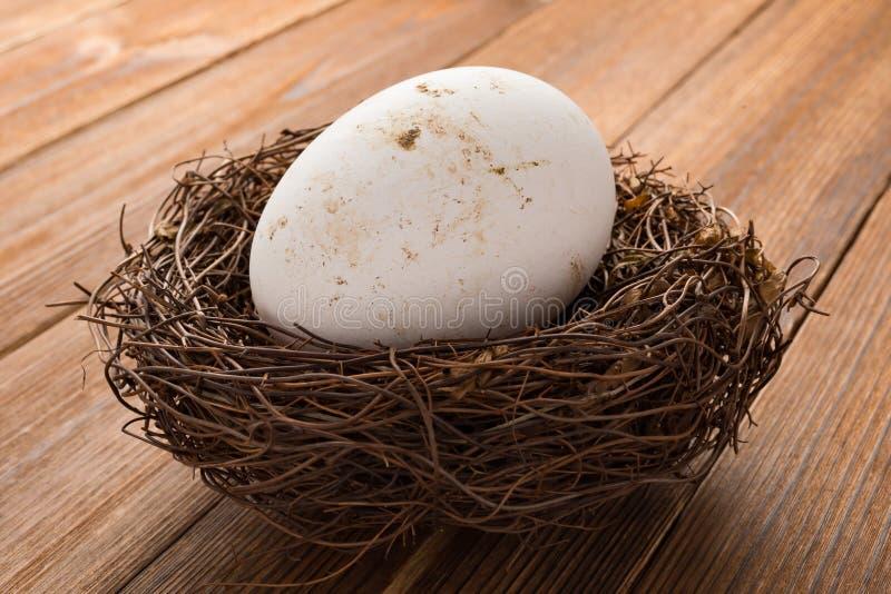 Download Het Ei Van De Zijaanzichtgans Op Nest Op Hout Stock Foto - Afbeelding bestaande uit shell, eierschaal: 107706532