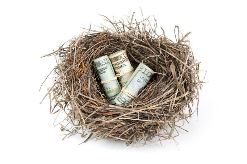 Het Ei van het Nest van het geld stock afbeelding