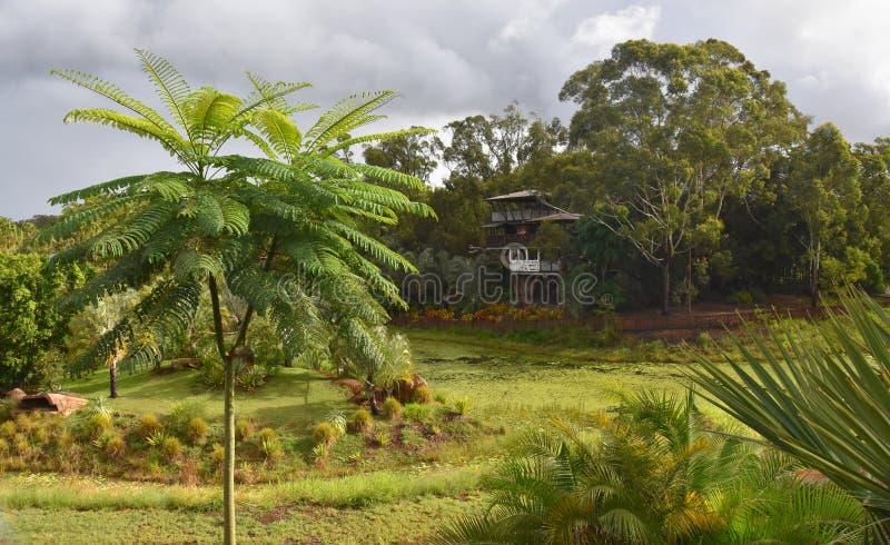 Het Eiland van Bindi is een drie-verhaal treehouse royalty-vrije stock fotografie