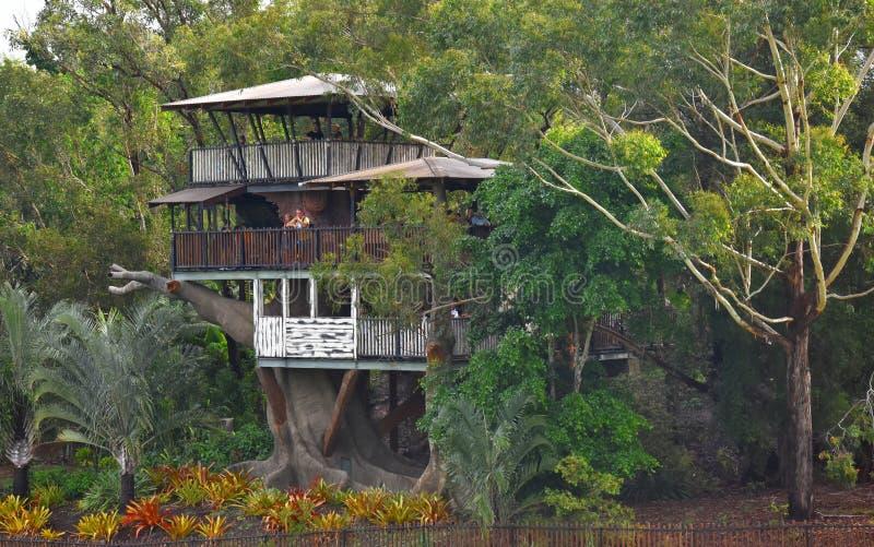 Het Eiland van Bindi is een drie-verhaal treehouse royalty-vrije stock foto