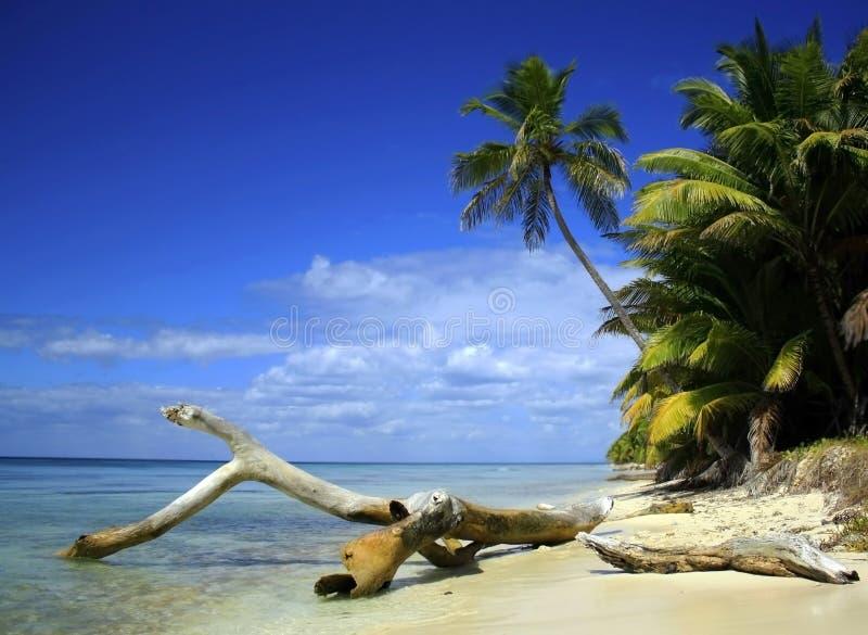 Het Eiland Van Caribean Stock Afbeeldingen