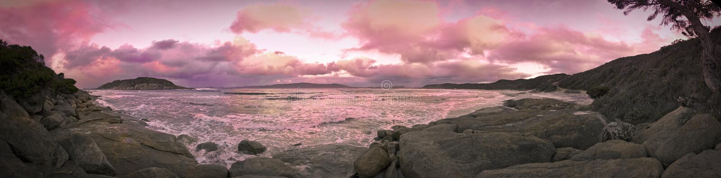 Het Eiland van de Vogel van het schaap royalty-vrije stock fotografie