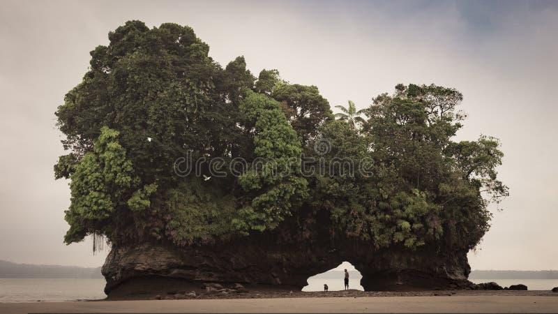 Het Eiland van het ebstrand, Columbiaanse Pacifico-Oceaan stock foto