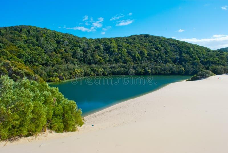 Het Eiland van Fraser, Queensland, Australië stock foto's