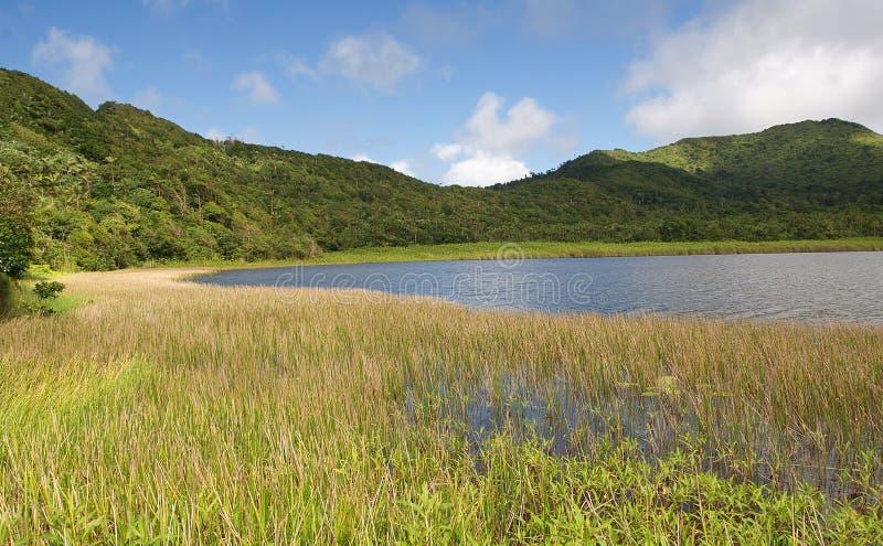 Het eiland van Grenada - Groot Etang-Meer royalty-vrije stock afbeelding