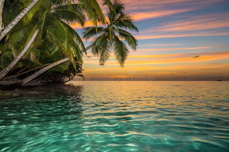 Het eiland van het zonsondergangparadijs stock afbeelding