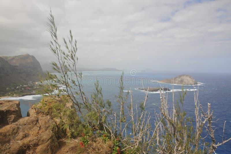 Het Eiland van MÄ  Nana, Oahu stock foto's