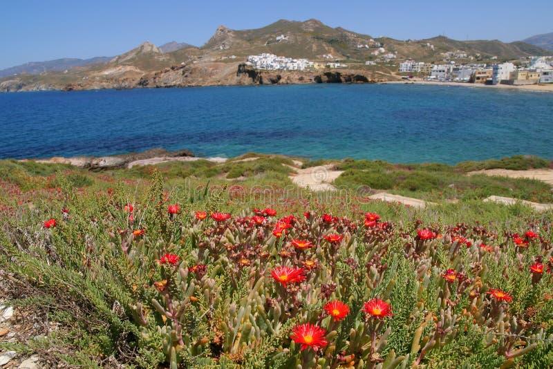 Het Eiland van Naxos, Griekenland stock foto's
