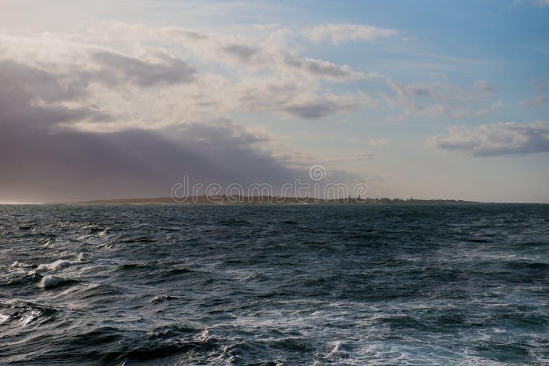 Het Eiland van Robben stock foto