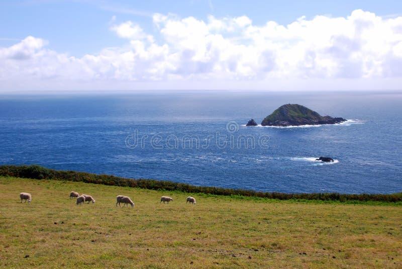 Het Eiland van Sark royalty-vrije stock fotografie