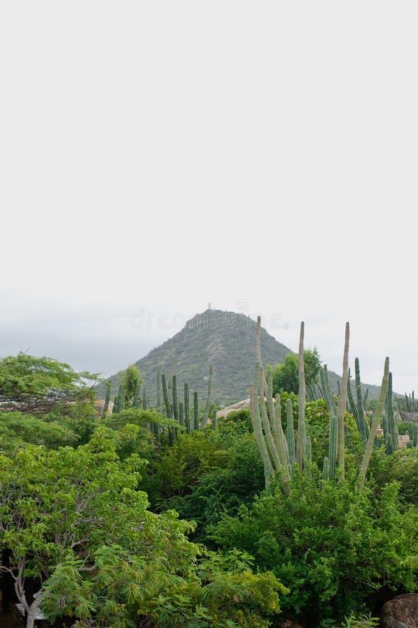 Het eilandlandschap van Aruba royalty-vrije stock afbeelding